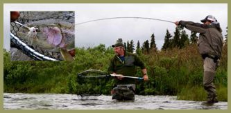Rainbow Trout Alaska Fly Fish Alaska Salmon Togiak King Salmon